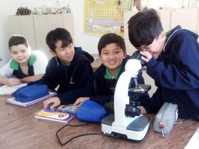 Sistema Circulatório é tema de aula no laboratório